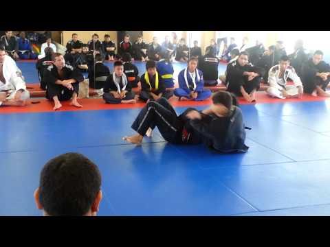 Brazilian Jiu-Jitsu Purple Belt Meaning - BJJGrappling com