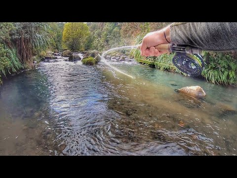 Sight Fishing The Best River Ever [Fly Fishing]