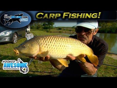 Carp Fishing Tips in hot weather | TAFishing