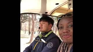 South-Korea : Nami Island 🇰🇷