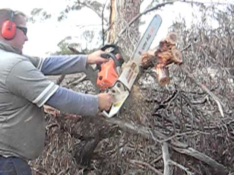 Baumr-Ag PRO SX62 62cc 22in Bar Chainsaw In Action
