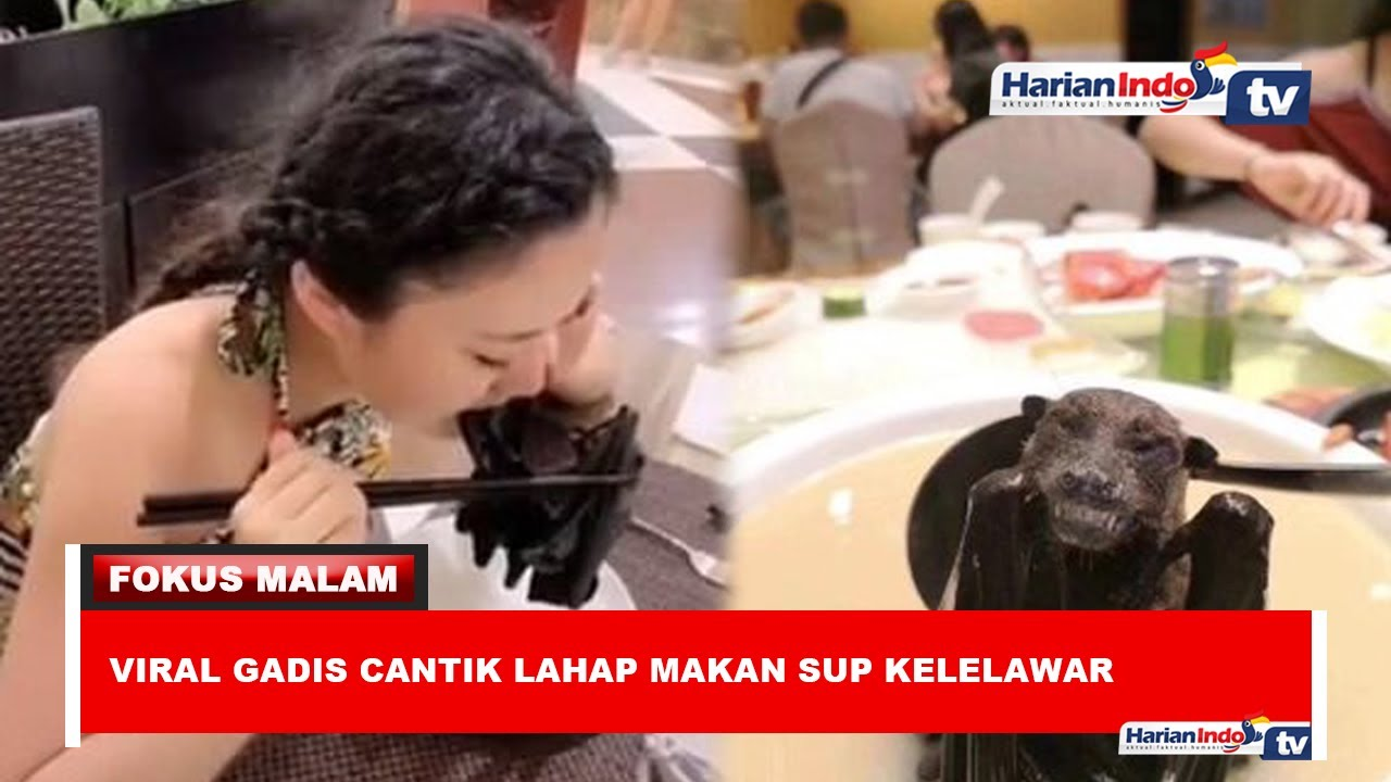 Viral Gadis Cantik Lahap Makan Sup Kelelawar Youtube