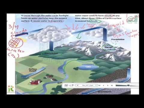 Grade 4 Science Unit 5 The water Cycle