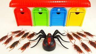 Pj Masks, Disney Cars, Tayo Cockroach Monster Story & Spider Monster Learn Colors for Kids