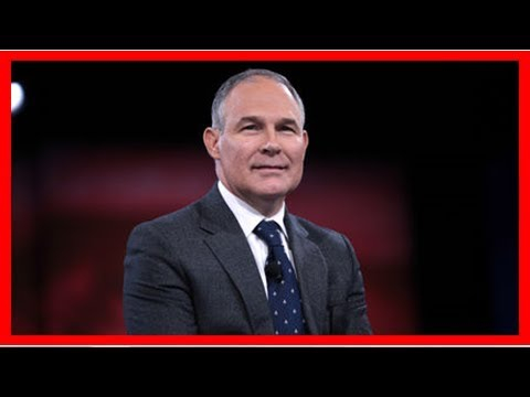 Epa chief says carbon dioxide not 'primary contributor' to climate change