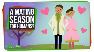 Why Don't Humans Have a Mating Season?