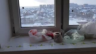 Шимай жөндеу қаласында Домодедово