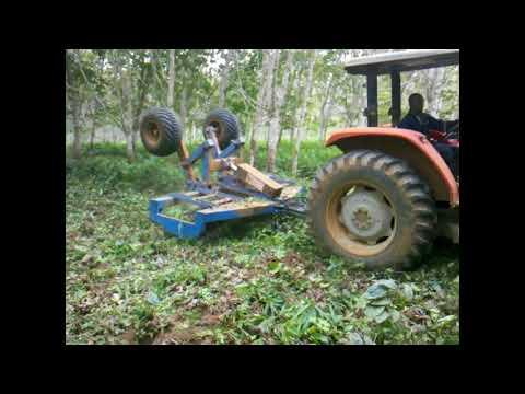 Débroussaillement sur plantation d'hévéa