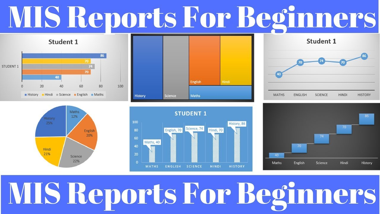 MIS Report in Excel for Beginners