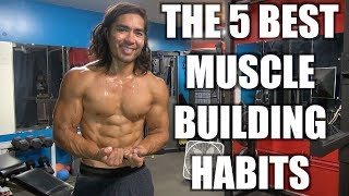 5 Best Muscle Building Habits/Tips You Need To Know!