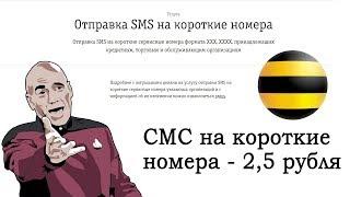 А не ДИЧЬ ли это? СМС с Билайна на короткие номера - по 2,5 рубля за сообщение