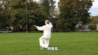 48式太極拳背向慢動作-1 (2013.09.16) 48 Form Tai Chi  Slow moving-1 (Back View)
