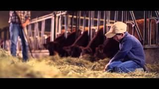 Chambre de l'Agriculture - Promotion de l'élevage bovin luxembourgeois