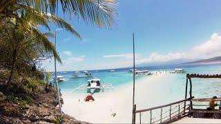 Największe Ryby Świata - Rekiny Wielorybie i Rajska Wyspa Sumilon. Filipiny.