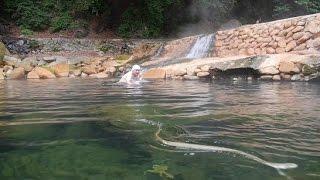 【野湯】尻焼温泉(群馬県)川が熱い!尻が焼ける?大自然の混浴露天温泉