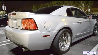 450whp 04 Terminator Cobra vs 530whp Mustang GT