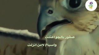 كلمات شيلة ويلان عز رجالها - ماجد الرسلاني [ طرررب ] 2017