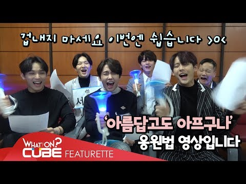 BTOB - 'Beautiful Pain' fanchant