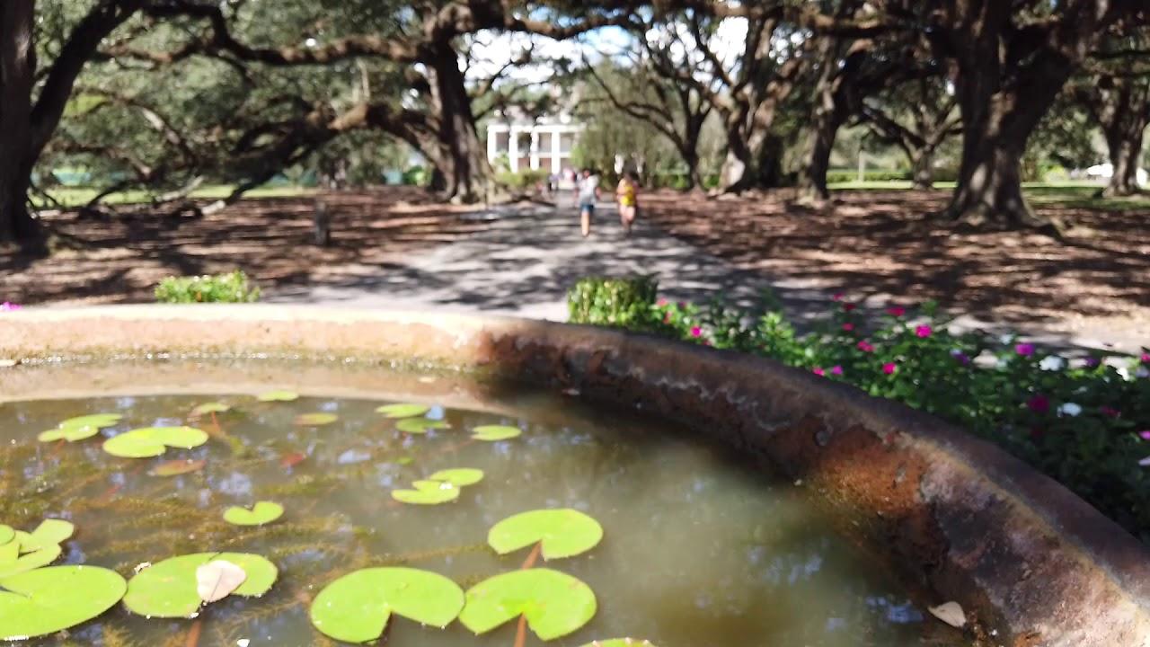 Oak Alley Plantation Nearby New Orleans Youtube