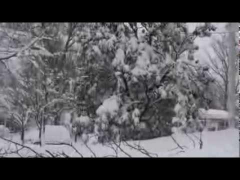 2010 Blizzard Maryland