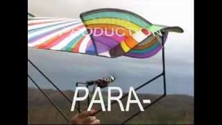 ROTORWING Part 6 * PARA - MONOWING * RC - Experimental * 3D Vector Control *