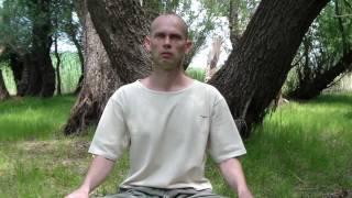 Часть 2. Медитация в интегральной йоге Шри Ауробиндо