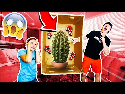GIANT DEADLY WHAT'S IN THE BOX CHALLENGE!