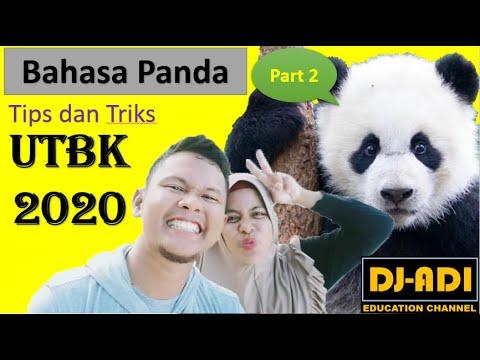 fr-utbk-2020-soal-bahasa-panda-nomor-4-sampai-6