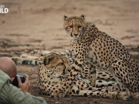 How to take wildlife photos like a pro