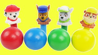 Best Toddler Toy Learning Kid Video with Paw Patrol Toys to Learn Colors, Counting, and Shapes
