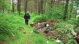 Ужасы на кладбище домашних животных / Новости