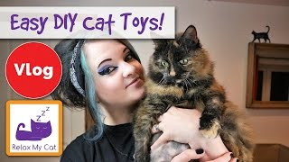 More Easy DIY Cat Toy Ideas! How to make your own cat toys