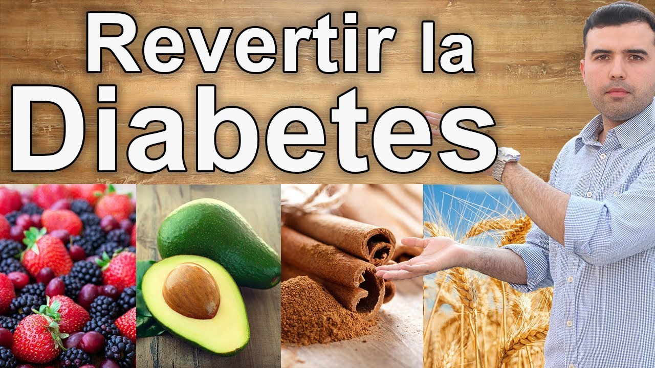 dieta de diabetes funcional alvleesklier