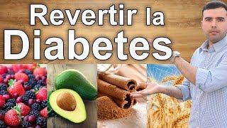 Como Revertir la Diabetes – Remedios Caseros, Suplementos y Dietas Para Tratar la Diabetes