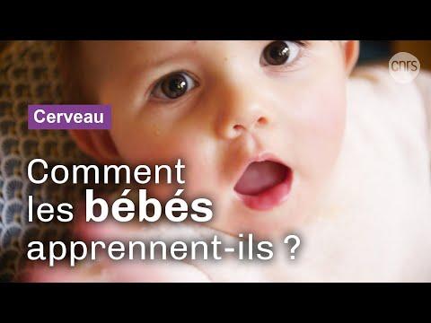 Comment les bébés apprennent à parler