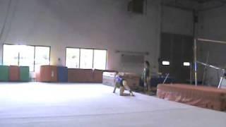 Dani Floor Routine 2009