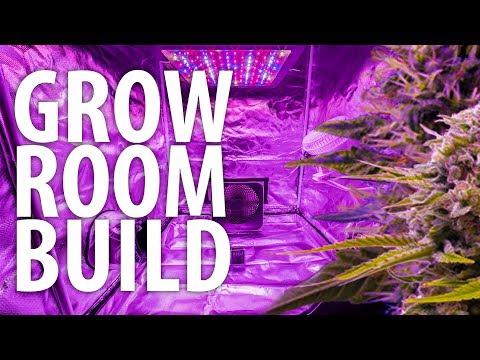 Discrete Closet Grow Room - My First Auto Flower Grow