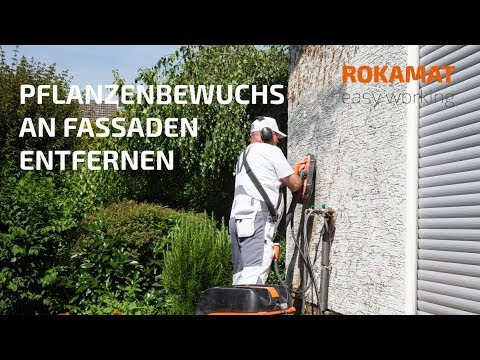 Pflanzenbewuchs an Fassaden entfernen, z. B. Efeu entfernen | ROKAMAT CHAMELEON