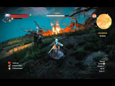 Witcher  Level  Build Crit
