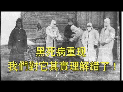 文昭:中国新增鼠疫确诊,黑死病我们理解错了!瘟疫和王朝末劫总相连?