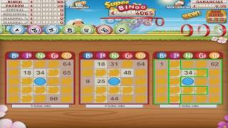 GamePoint Bingo Manual 5