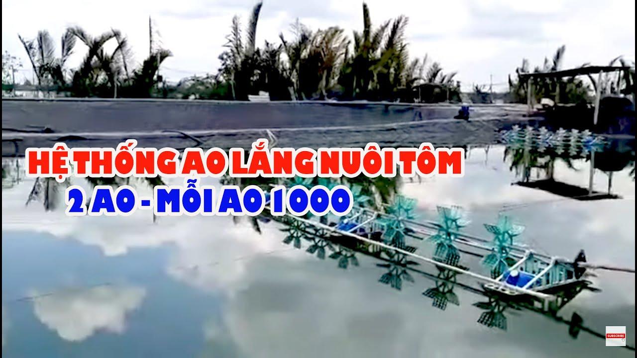 MÁY SANG TÔM TỰ CHẾ 4 TRIỆU ĐỒNG | Trần Quang Huy Official