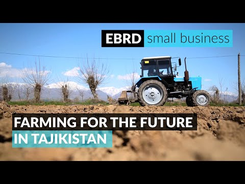 Building a stronger economy in Tajikistan