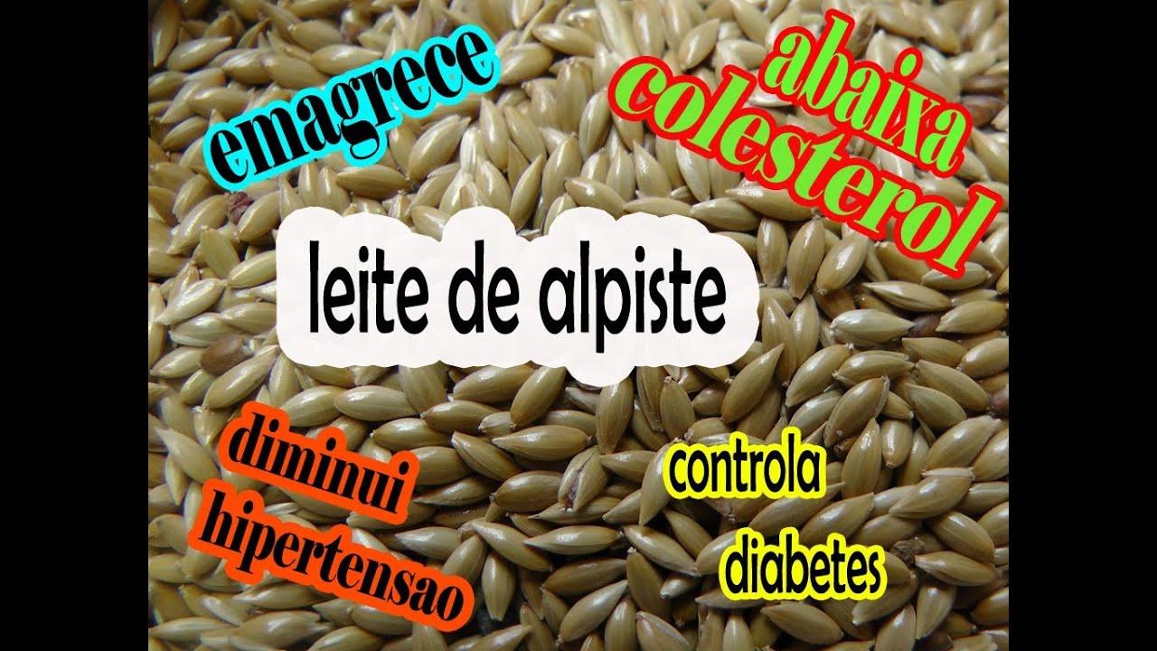 leche de alpiste pentru pierderea în greutate)