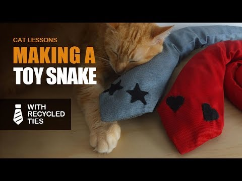 How to Make a Toy Snake for Cats