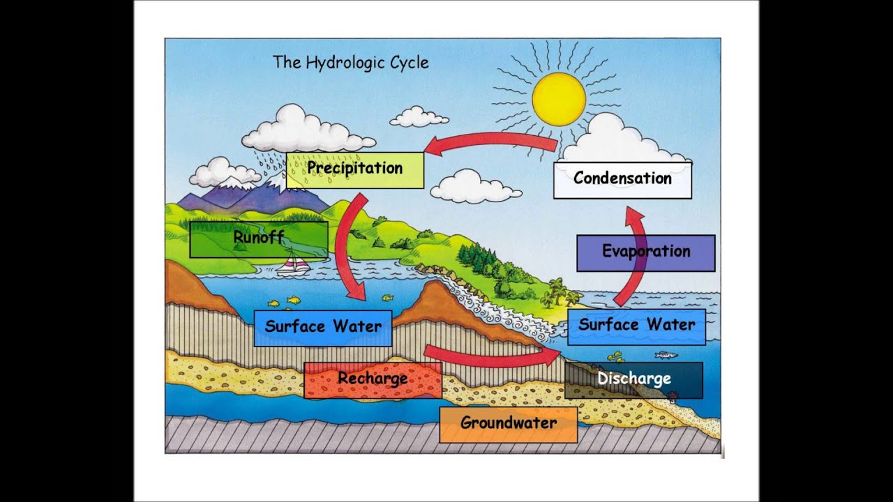 water cycle bangles youtube simple water cycle diagram with explanation water cycle diagram with explanation in hindi [ 1280 x 720 Pixel ]