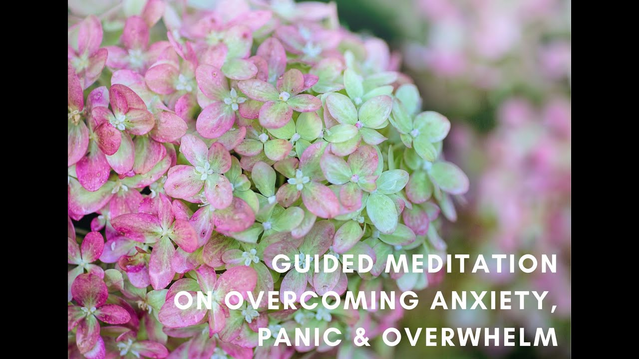 Guided Meditation: Overcoming Anxiety, Panic & Overwhelm