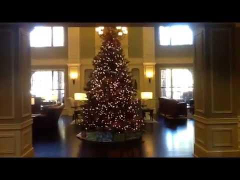 Majestic Living Room & Bar & Luxurious Swimming Pool & Spa Courtyard Marriott Charleston Mt Pleasant