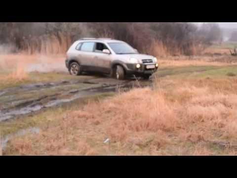 Туссан в грязевой луже