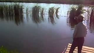 Рыбалка!Ловля щуки на нахлыст! My Edited Video.
